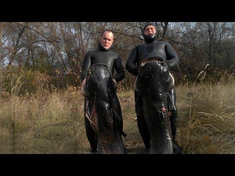 подводная охота на сомов и щук видео