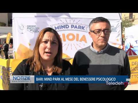 Mind Park 2016 - Tele Dehon