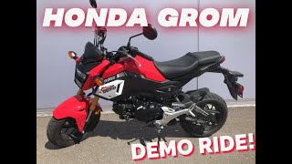 6. 2019 HONDA GROM! Ride & Review