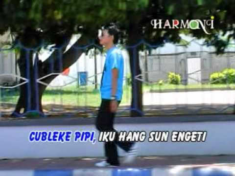 Candra Banyu - Lare Ayu ( How are you today )