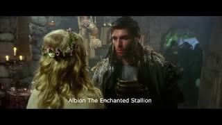 You Are Fool Albion The Enchanted Stallion