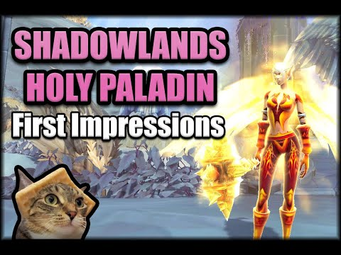 How Does Holy Paladin Feel in Shadowlands Beta?