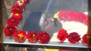 Video Murali's dead. www.tamilcnn.com MP3, 3GP, MP4, WEBM, AVI, FLV Oktober 2018