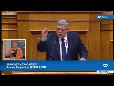 Ν.Μιχαλολιάκος(Γ.Γραμμ. Χρυσής Αυγής)(Συζήτηση για διενέργεια προκαταρκτικής εξέτασης)(08/03/2018)