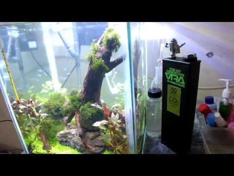 CO2 DIY Ragul With Check Valve untuk Aquascape