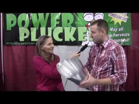 Can You Pluck A Chicken Clean In 90 Seconds? with Marjory Wildcraft and Eli Burton
