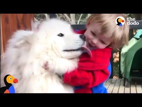 cane-e-bimbo-crescono-insieme