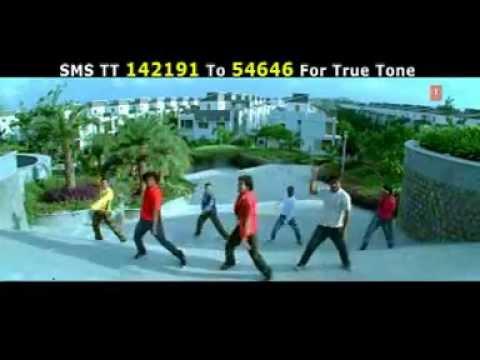 Video Maal Kachkachva Bani Hai Golga download in MP3, 3GP, MP4, WEBM, AVI, FLV January 2017