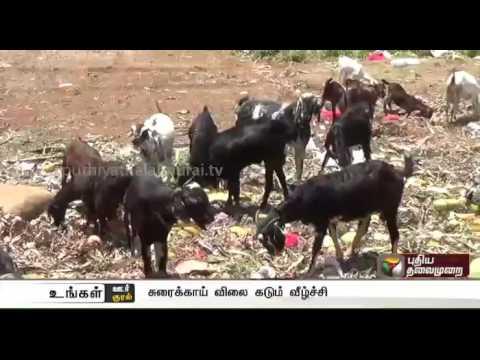 Ungal-Oor-Ungal-Kural-Morning-News-13-08-2016-Puthiyathalaimurai-TV