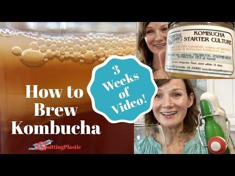 Thin tea - How to Make Kombucha  Quitting Plastic