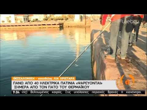 Θερμαϊκός   «Ψαρεύονται» πάνω από 40 πατίνια   07/01/2020   ΕΡΤ