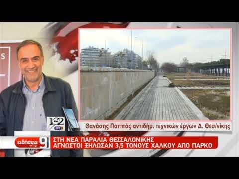 Στη Θεσσαλονίκη άγνωστοι ξήλωσαν 3,5 τόννους χαλκού από πάρκο | 18/1/2019 | ΕΡΤ
