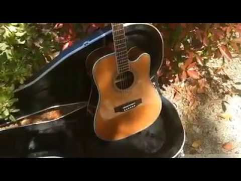 New 2019 Zager Easy Play  ZAD80CE Professional Aura Edition Acoustic Electric Guitar