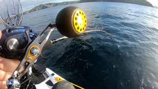 10. Latest Sea-Doo FISH PRO adventure with Andrew Hill