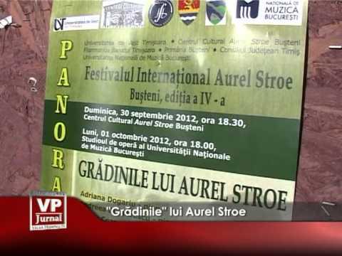 """""""GRADINILE"""" LUI AUREL STROE"""