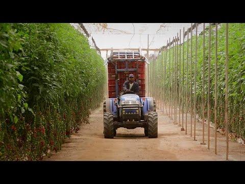 Το «Τριπλό Α» στο Μαρόκο, μια πρωτοβουλία κατά της κλιματικής αλλαγής
