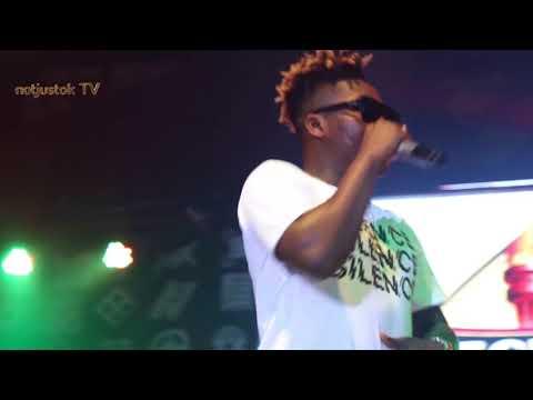 NotjustOk TV: Timaya, Reekado Banks, Ice Prince + More   Felabration 2017 [Day 5 Highlights]