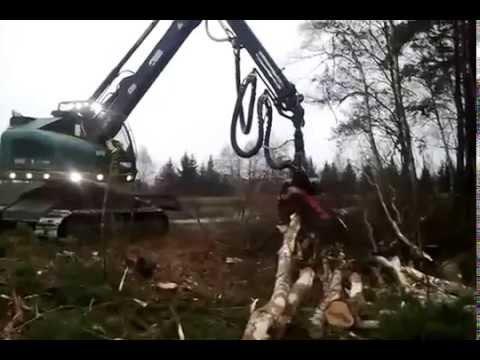 Harvester Neuson WFW Forstbetrieb Haneder Holzheim Bayern