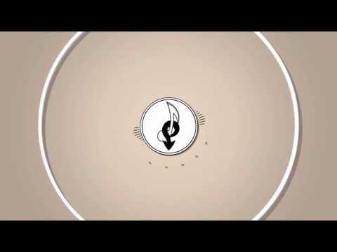 Funk || Professor Kliq - Wire & Flashing Lights