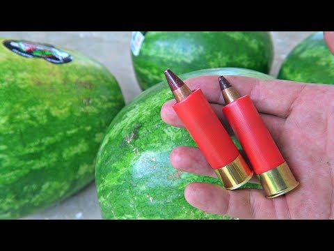 Watch These Watermelons Get Annihilated by a 12 Gauge Shotgun Loaded with .50 BMG Bullets