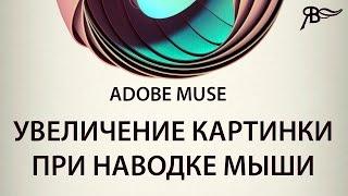 Админка для сайтов Adobe Muse. Официальная cms от Adobe. Анонс обновлений от 18 июня 2014 VideoStar