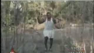 Omni Dawoda Mahlet G/giorgis