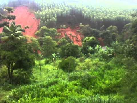 Estrago causado pela chuva em Sardoá-MG