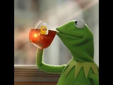 Kermit Drinking business Kermit the frog