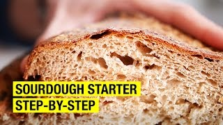 Foolproof Guide to Making Sourdough Starter ! by Alex French Guy Cooking