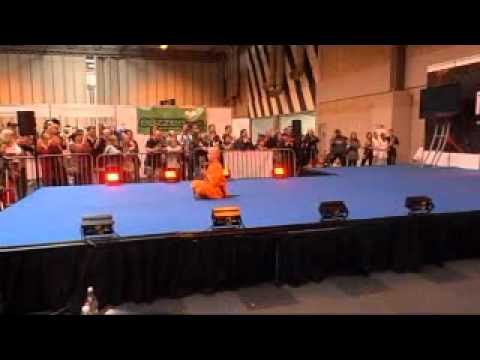 Shaolin Monks at The Martial Arts show 2012 – Part 2