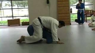 Brazilian Jiu Jitsu | Rolling Choke Combinations | Academy Archives | ROYDEAN.TV