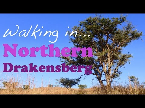 VIDEO: Walking in Rural Drakensberg