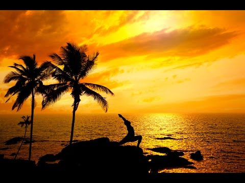 8 Hour Meditation for Sleep: Delta Waves, Fall Asleep, Dream Music, Sleep Music ☯455