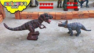 TRICERATOPS VS TREX Dinosaur Fight Tournament! Skyheart's battle event dinosaur toys for kids