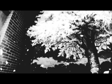 stereoRYZE - Hoshi (2014)