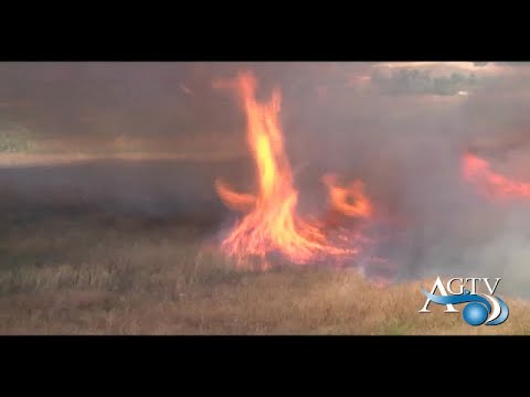 Incendi,roghi nell'agrigentino a Ragusa 15 vigili del fuoco indagati per truffa e incendio NewsAgtv