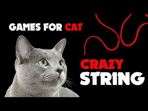 CAT GAMES ★ CRAZY STRING thing for cats