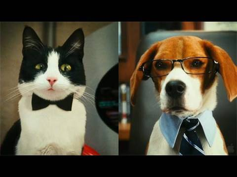 Cats & Dogs: The Revenge of Kitty Galore - Movie Review