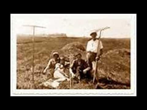 שורו הביטו וראו - מותו של הקיבוץ