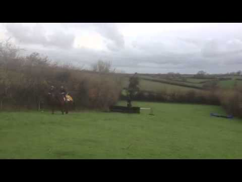 Lizzie Luxton's point-to-point blog: Sore heads, great praise and final preparations [VIDEO]
