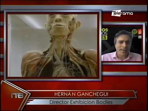 Bodies exposición de cuerpos humanos reales Palacio de Cristal de Guayaquil