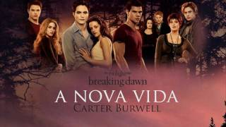 I DON'T OWN ANYTHING!Carter Burwell - A Novia Vidafrom Breaking Dawn Part 1 Soundtrack