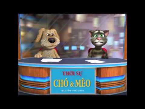Thời Sự Chó&Mèo - Số 2 - Bản Tin Arsenal, Xăng Tăng, McDonald's, Giao Thông