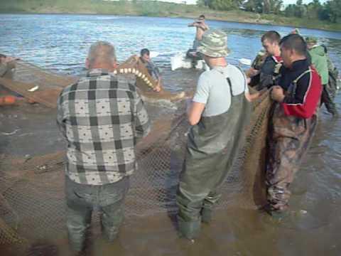 видео рыбалка бреднем на реке