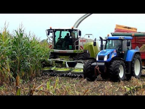 T7060 - Loonbedrijf Grefelman (Luttenberg) aan het maishakselen met hun Claas Jaguar 940 en een vijftal New Holland tractoren , de T7.270, een van de TVT155's en de ...