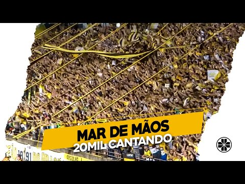 Os Tigres | Somos do time carvoeiro - Criciúma 2 x 0 Chapecoense - Final do jogo - Os Tigres - Criciúma