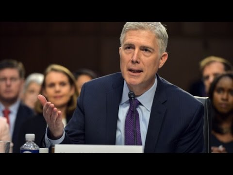 Gorsuch stumped over horse-sized duck question (видео)