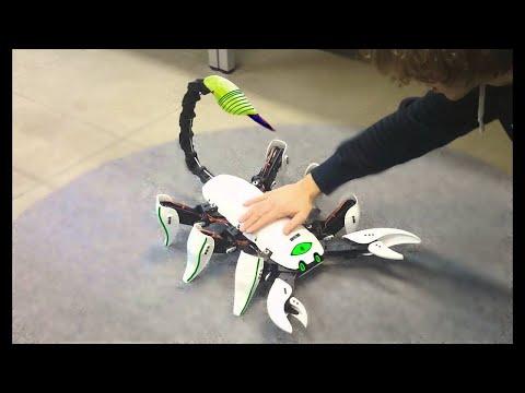العرب اليوم - أروع 8 روبوتات على شكل حشرات