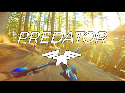 Trail Peek 2.0 - Riding A Bucket List Trail - Predator - Issaquah, Washington