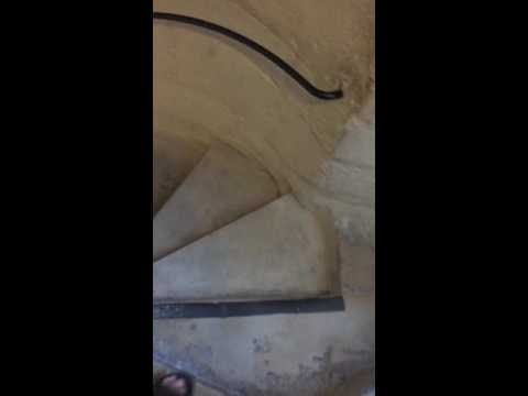 Notre Dame Stairs